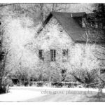 Winter Wonderland | Kingston Photographer